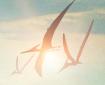 2 nouveaux posters pour la série Terra Nova